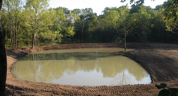 Stocking fish freshwater farms of ohio for Bass pond design