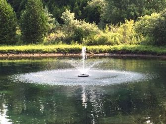 WaterSmith 1/2 hp pond fountain with lily nozzle pattern