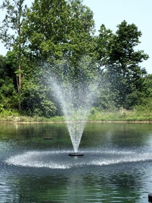 WaterSmith 1 hp pond fountain with gemini nozzle pattern