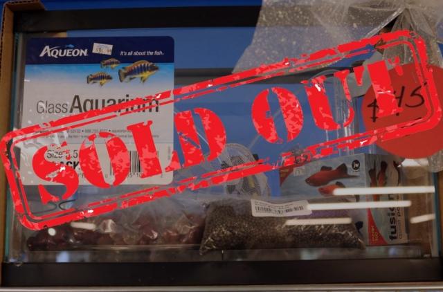 5.5 Gallon Rectangular Aquarium Kit