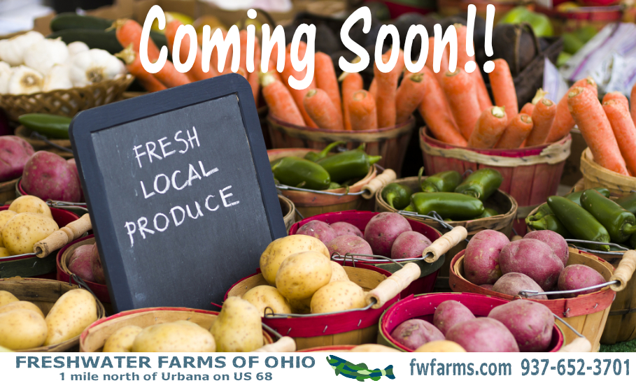 Local produce coming soon