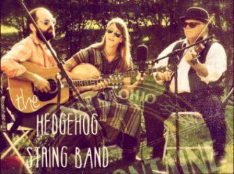 hedgehog band