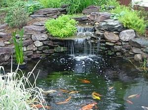 Water Gardens-2